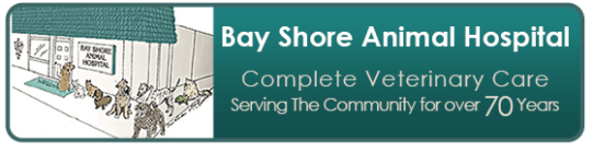 Bayshore Animal Hospital Logo