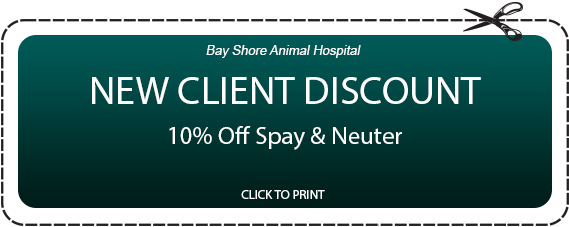 Bay Shore Animal Hospital NEW CLIENT DISCOUNT 10% Off Spay & Neuter CLICK TO PRINT